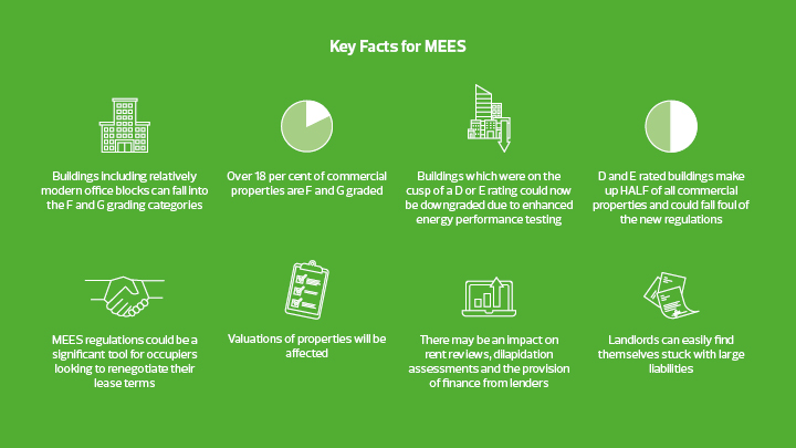 Key facts for MEES